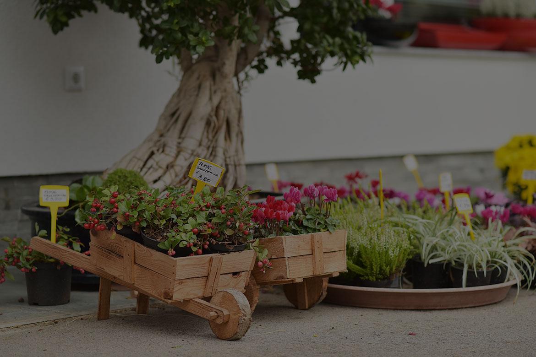Vrtnarstvo Matko
