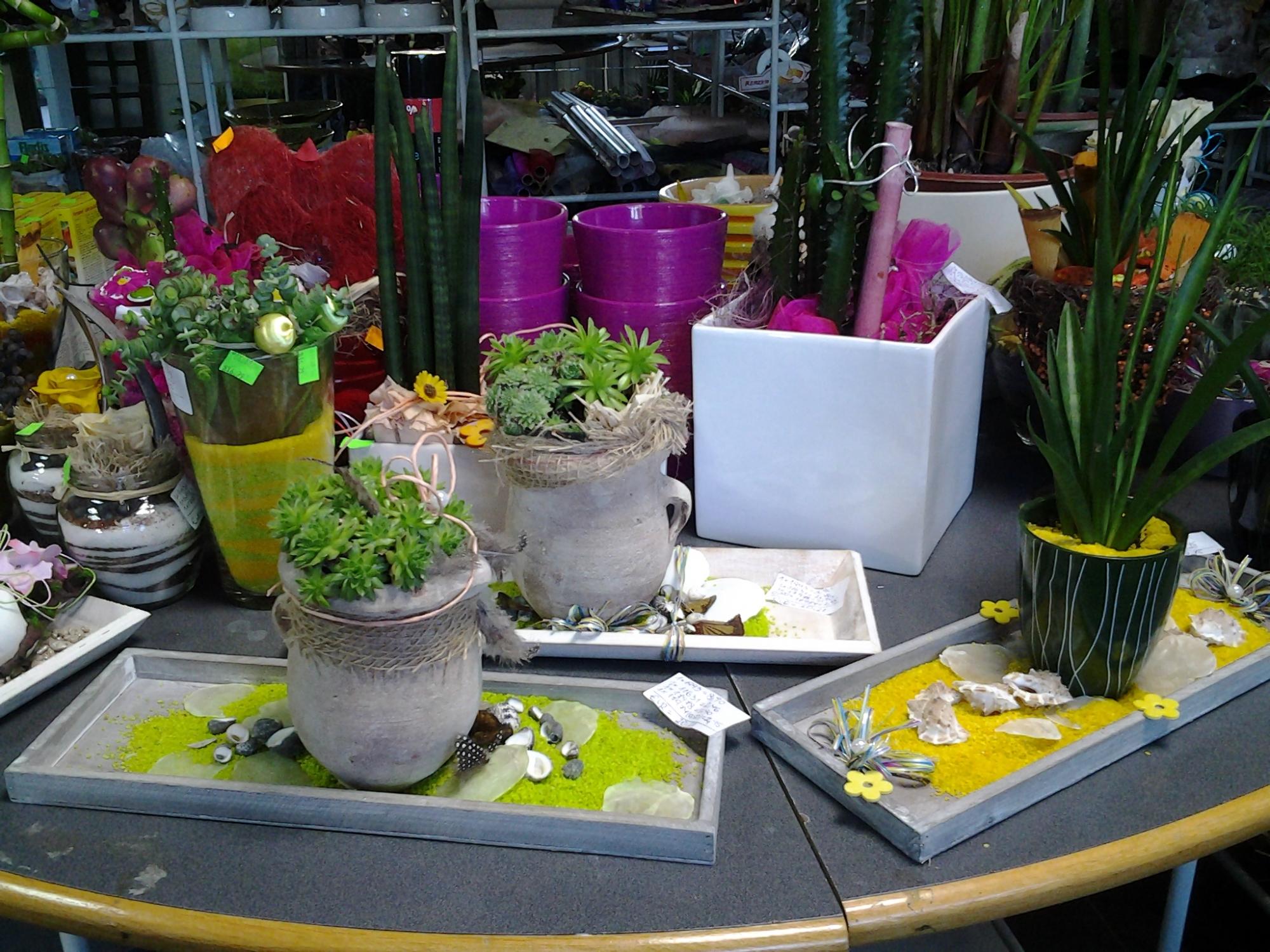 Vrtnarstvo Matko Cvetličarstvo